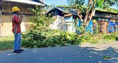 Angin Kencang, Petugas PLN Lakukan Perambasan Pohon