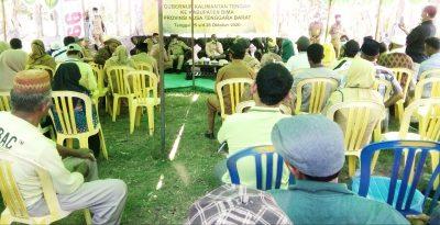 Belajar Pola Bertani Jagung, Gubernur Kalteng Kunker di Bima
