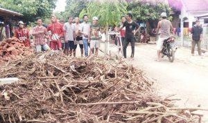 Tuntut Gubernur Lebarkan Jembatan, Warga Rada Tanam Pohon di Jalan