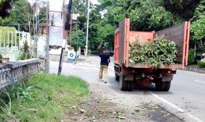 Tata Keindahan Kota, DLH Bersihkan Taman Ria