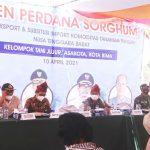 Bersama Kampung Berseri Astra, Panen Perdana Sorghum Berjalan Sukses