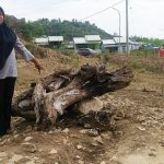 Pekerjaan Bor Air 'Siluman' di Kadole, Pemerintah dan PPK tidak Tahu Menahu