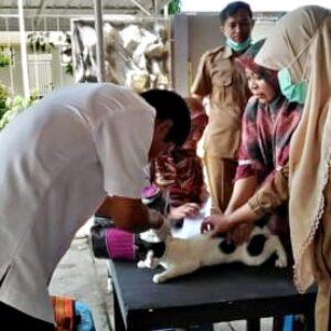 Cegah Penyakit Menular, Dinas Pertanian Vaksinasi Hewan