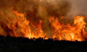 Kondisi Kemarau Normal, Warga Tetap Diimbau Waspada Kebakaran