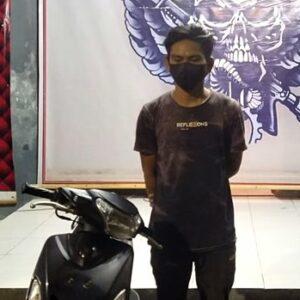 AP, warga Kampung Sumbawa Kelurahan Tanjung saat diamankan Tim Puma. Foto: Ist